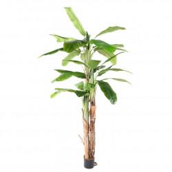 Bananier de 240 cm composé de 3 troncs et de 34 feuilles en tergal