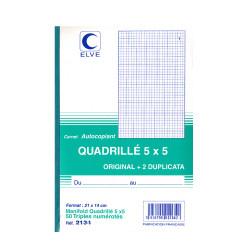 Carnets quadrillés A5 (3exemplaires)