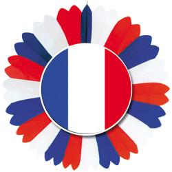Roue de 60 cm représentant le drapeau Français